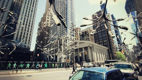 new-york-biotopes02