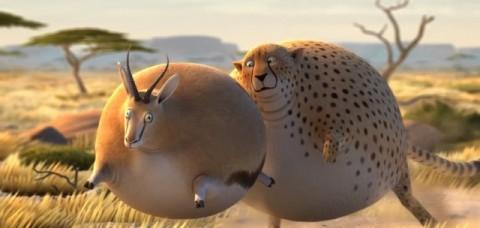 rollin-safari01