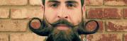 incredibeard. el tipo de las barbas creativas