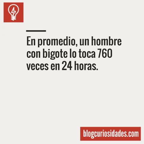 blogcuriosidades11
