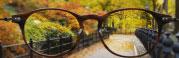 así se ve nueva york a través de unas gafas