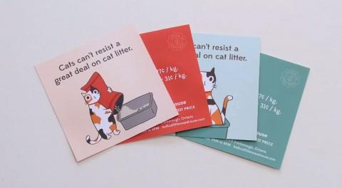 correo-para-gatos-mis-gafas-de-pasta01