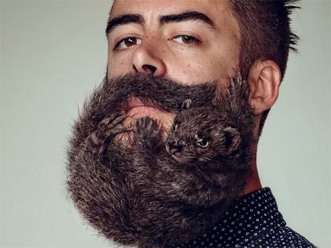 barbas no sexy mis gafas de pasta04