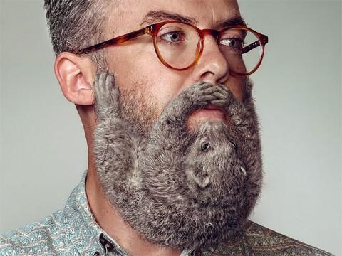 barbas no sexy mis gafas de pasta06