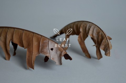 leaf beast mis gafas de pasta01