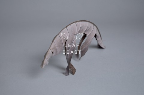 leaf beast mis gafas de pasta03