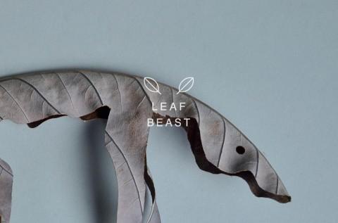 leaf beast mis gafas de pasta04