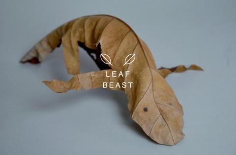 leaf beast mis gafas de pasta06
