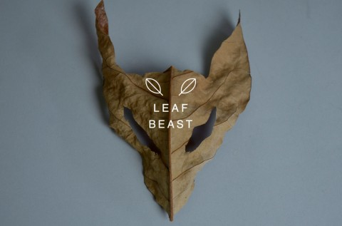 leaf beast mis gafas de pasta07