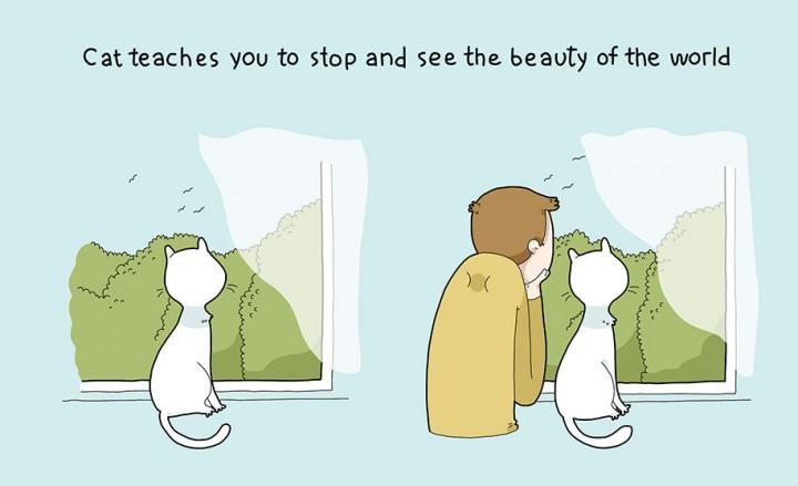 10 beneficios gatos mis gafas de pasta05