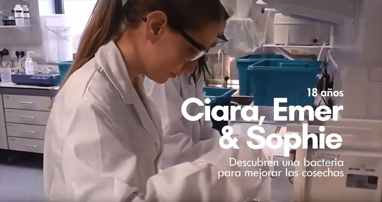 ing ciara, emer y sophie inventan una bacteria para mejorar los cultivos