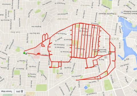 stephen lund hace un armadillo gps mientras va en bici