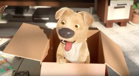 un cachorro sale de una caja en the present