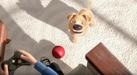 el cachorro quiere el niño le lance una pelota en the present