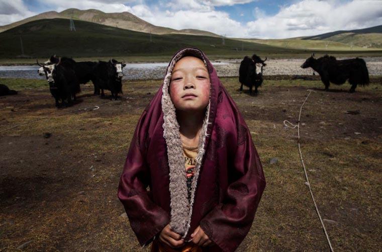 sony world photography awards kevin frayer canada 3