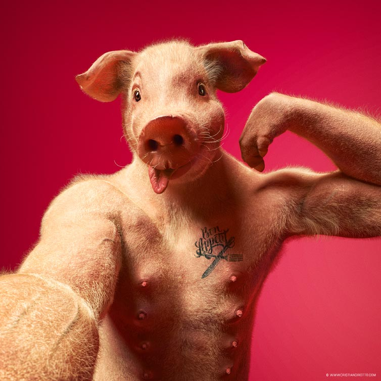 social animals cerdo mis gafas de pasta