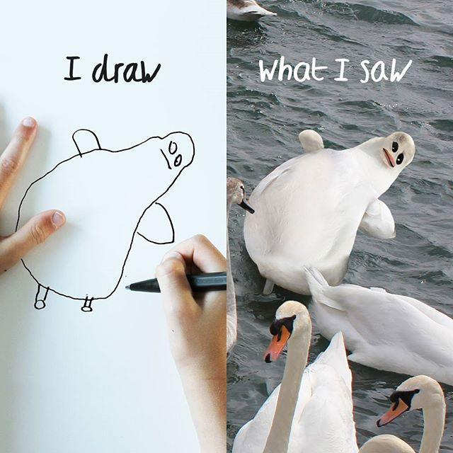 things i have drawn mis gafas de pasta15