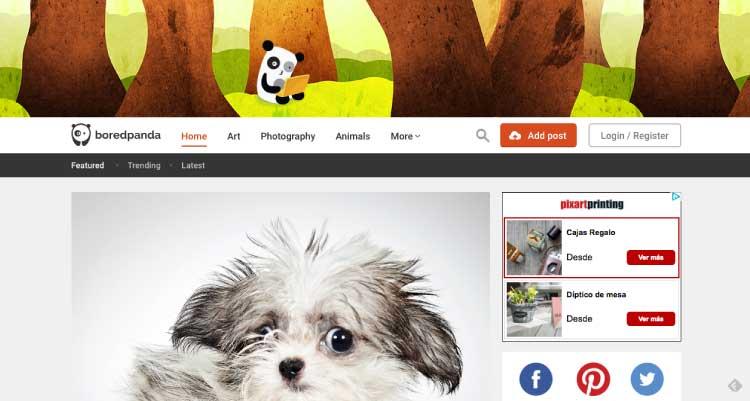 7 lugares inspiracion mis gafas de pasta bored panda