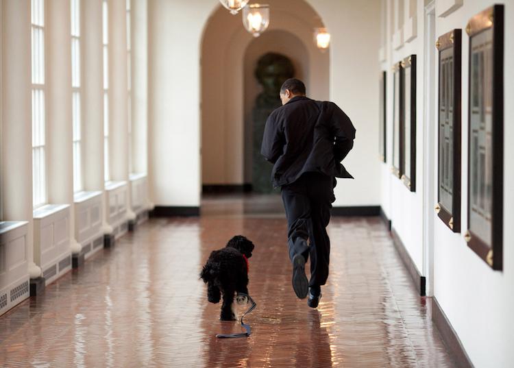 fotos obama mis gafas de pasta11