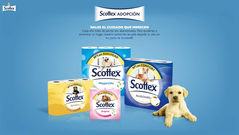 scottex-adopcion-mis-gafas-de-pasta03