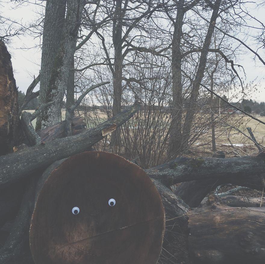 eyebombing uppsala ser dig ojos mis gafas de pasta02