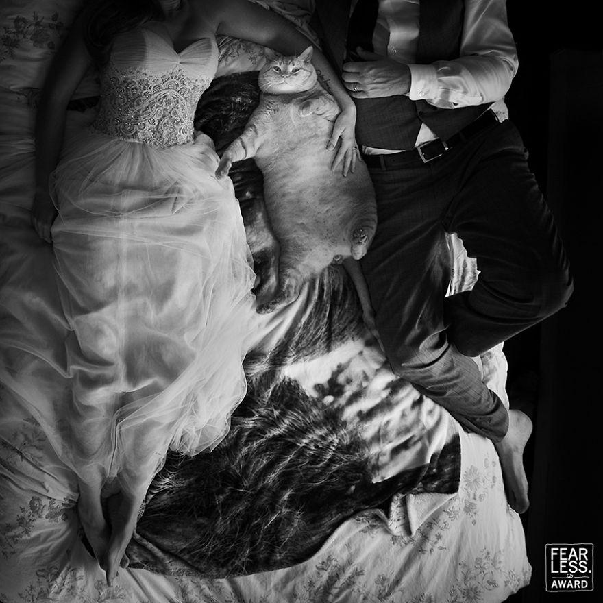 fotos de boda de 2017 fearless mis gafas de pasta21