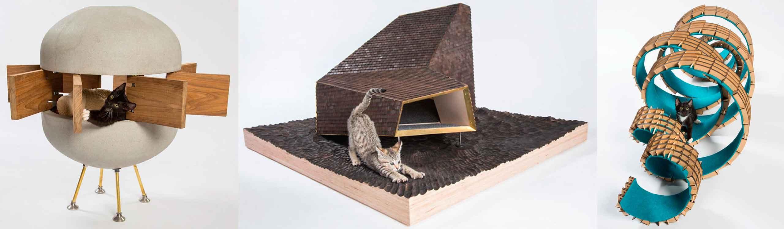 casas-para-gatos-abandonados-mis-gafas-de-pasta-destacado