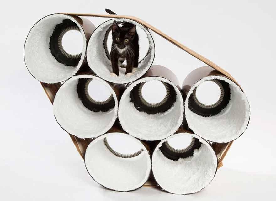 casas para gatos abandonados mis gafas de pasta10