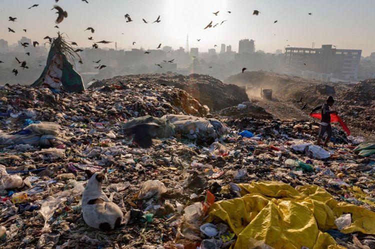 crisis del plastico national geographic mis gafas de pasta15