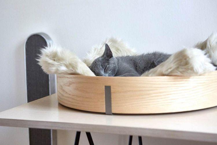 tuft paw cat muebles para gatos mis gafas de pasta01