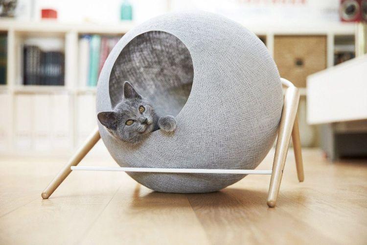tuft paw cat muebles para gatos mis gafas de pasta05