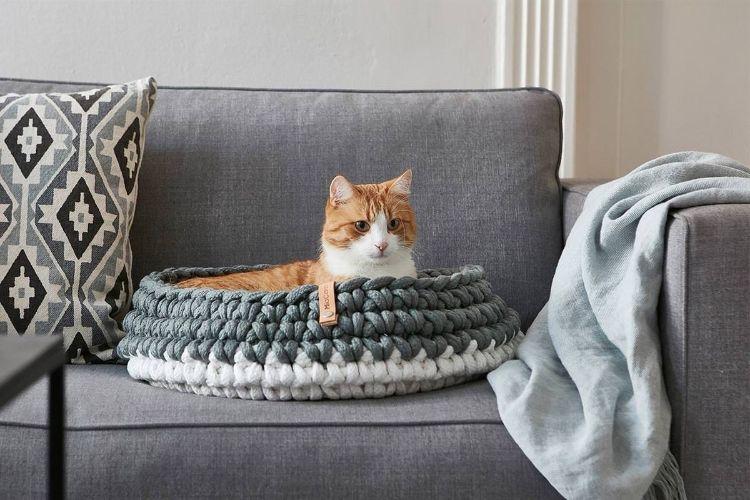 tuft paw cat muebles para gatos mis gafas de pasta10